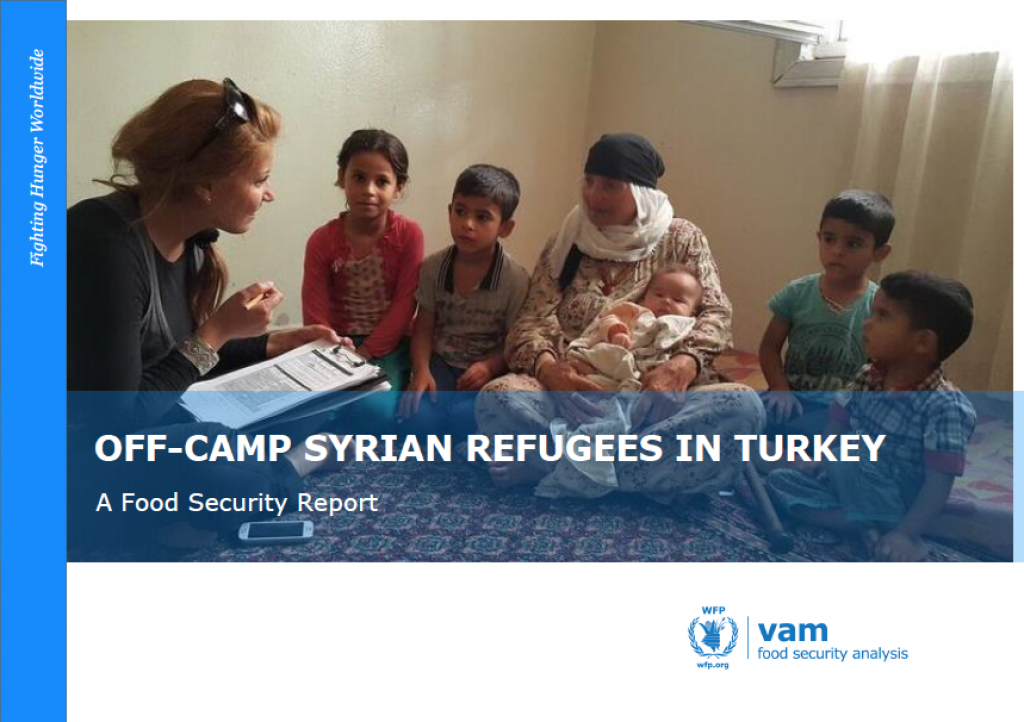 Off-camp Syrian refugees in Turkey