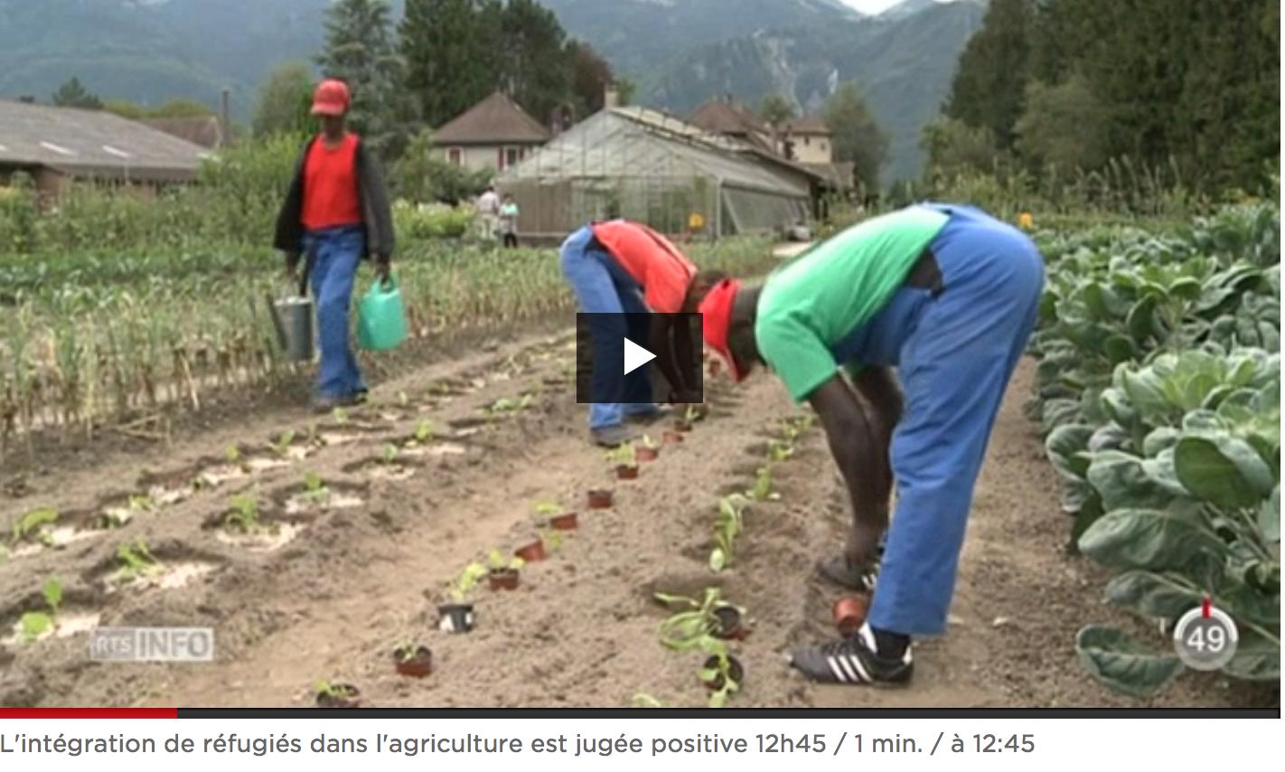 RTS_RefugiesAgriculture