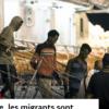 """Illustration de l'article """"En Italie, les migrants sont arrêtés à la chaîne pour avoir tenu la barre"""""""